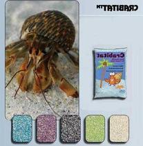 Crabitat Hermit Crab Sand  Color: Green