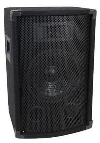 MCM Custom Audio 555-10300 8'' Two Way PA / DJ Speaker 300W