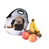 iColor Cute Pug Boys Girls Kids Neoprene Sleeve Insulated