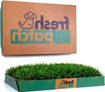 Fresh Patch Disposable Dog Potty with REAL Grass - As Seen