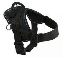 Dean and Tyler DT Dog Harness, Black With Reflective Trim,