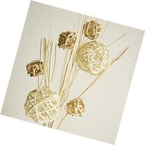 Exotic Elegance Set of Decorative Woven Rattan Ball Reed