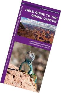 Field Guide to the Grand Canyon: An Introduction to Familiar