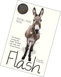 Flash: The Homeless Donkey Who Taught Me about Life, Faith,