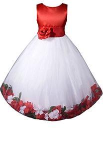 AMJ Dresses Inc Girls White/red Flower Girl Pageant Dress