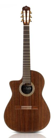 Cordoba Fusion 14 Rose - Rosewood Top - Acoustic Electric