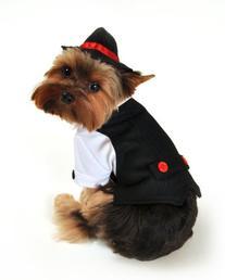 Anit Accessories Gangster Dog Costume, Medium, 16-Inch