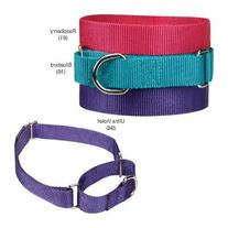 "Guardian Gear Nylon Martingale Dog Collar, Fits Necks 10"" to"