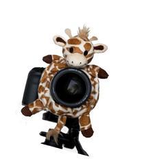 Shutter Huggers Giraffe Shutter Hugger GIR001