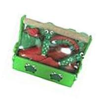 Grow with Me Deluxe Garden Tool Set/green Red