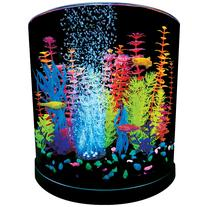 GloFish 3 Gallon Half Moon Aquarium Kit