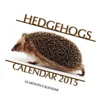 Hedgehogs Calendar 2015: 16 Month Calendar