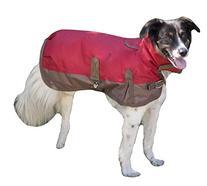 Fashion Pet Horse Blanket Waterproof Dog Coat, Large, Red