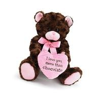 I Love you More Than Chocolate Valentines Day Heart Teddy