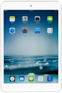 Apple iPad Mini w/ 7.9