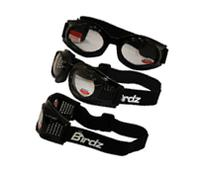 Birdz Kite Black Frame Motorcycle Goggles with Clear 2.0x