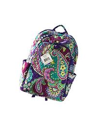 Laptop Backpack  with Solid Color Interiors