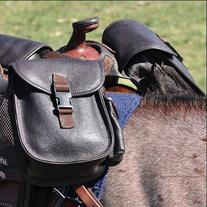 Cashel Leather Small Horn Bag