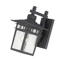 Nuvo Lighting 60/4953 Cove Neck One Light Wall Lantern/Arm