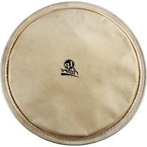 Latin Percussion LPA630A 12-1/2-Inch Aspire Djembe Head