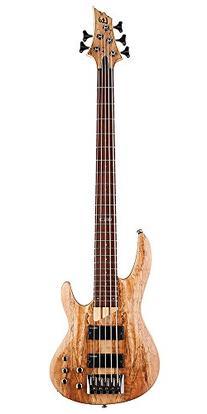 ESP LTD B Series B-205 Five-String Bass Guitar - Natural