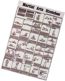 Martial Arts Stretches Poster Chart