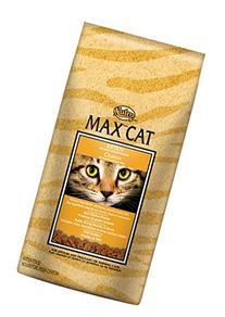 NUTRO MAX CAT Kitten Dry Cat Food, Roasted Chicken, 3 lbs