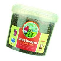 MEALWORMS TUB - 507731