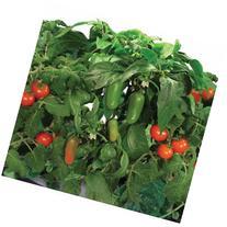 Miracle-Gro AeroGarden Salsa Garden 7-Pod Seed Kit