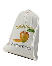 Scentbagz Multi-Purpose Powerful Air Freshener, Mango, 4X6in