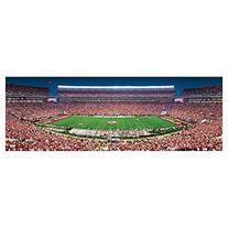 MasterPieces NCAA Clemson Tigers Panoramic Stadium Puzzle