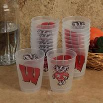 NCAA Wisconsin Badgers 16-pack 10oz. Frosted Cup
