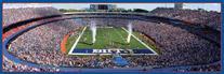 NFL Buffalo Bills Panoramic Stadium Puzzle