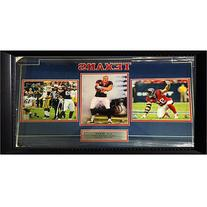 "NFL 15"" x 35"" Triple Frame, JJ Watt Houston Texans"