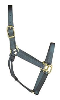 Hamilton 1-Inch Nylon Quality Halter for 800 to 1100-Pound