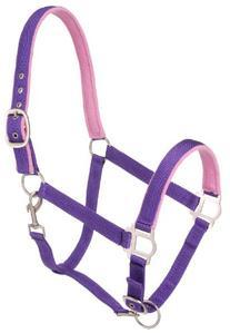 Tough 1 Nylon Padded Halter with Satin Hardware, Purple, Horse