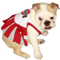 Pets First Ohio State Buckeyes Cheer Leading SM OSCLO-SM