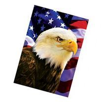 Patriotic Bald Eagle & American Flag Symbolic House Flag