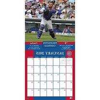Turner Perfect Timing 2015 Chicago Cubs Team Wall Calendar,