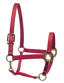Perris Leather Collection Nylon SuperHalter - Color: Red