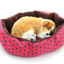 Masione Pet Bed Dog Puppy Cat Soft Cotton Fleece Warm Nest
