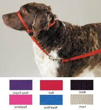 PetSafe Gentle Leader Head Collar with Training DVD, EXTRA