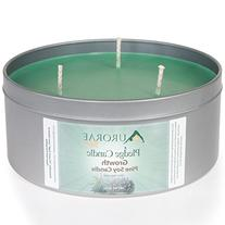 Aurorae 26 oz Pine Scented Soy Aromatherapy Candle