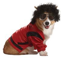 Pup-A-Razzi Pop King Dog Costume, Medium, Red/Black