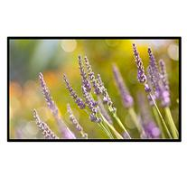 Portable Outdoor Movie Screen 60 Inch 16:9 Home Theater