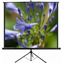"""VIVO 100"""" Portable Indoor Outdoor Projector Screen, 100 Inch"""