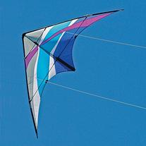 Into The Wind Puma Dual line Stunt Kite