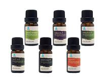 Pursonic 100% Pure Essential Aromatherapy Oils Gift Set-6