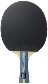 DHS Professional Quick-attack X Series Carbon Table Tennis