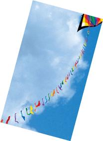 100-ft Rainbow Flag Kite Line